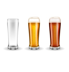 Three transparent glasses of lager vector