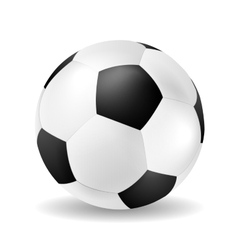 Isolated soccer ball closeup vector