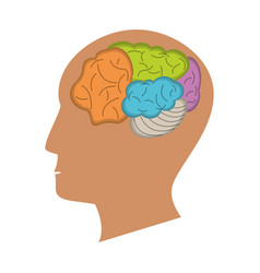human head brain process icon vector image