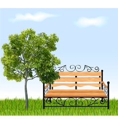 Bench with tree and grass vector image