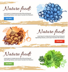 Natural food hand drawn banners vector
