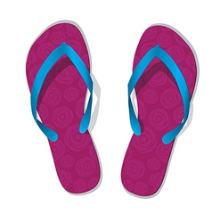 Pair of flip flops slippers vector