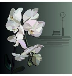 Orchid with a bench and street clock in the vector
