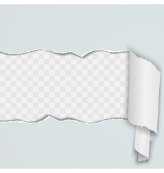 Light background with a torn strip of paper vector