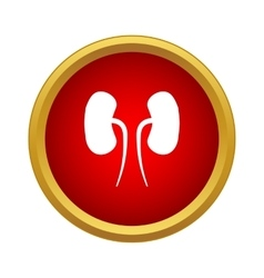 Human kidneys icon simple style vector