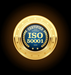 Iso 50001 standard medal - energy management vector