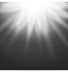 Shiny sunburst of sunbeams on the abstract vector