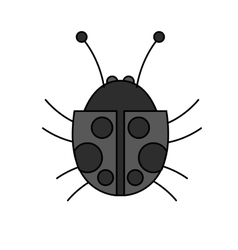 Isolated bug design vector image