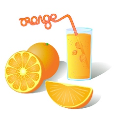 Fresh ripe orange slices with juice vector