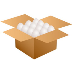 box with eggs vector image vector image