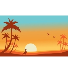 Silhouette of bird and palm landscaspe vector