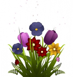 spring tulips and pansies vector image vector image