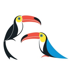 Toucan Cartoon vector image