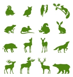 Forest animals collection vector