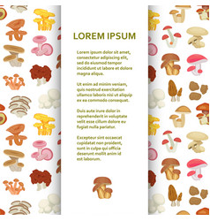 Flat poster or banner template with mushrooms vector
