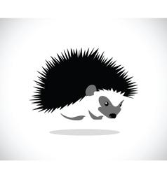 hedgehog 2 vector image vector image
