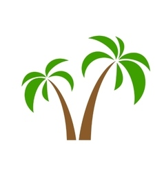 palms on white vector image