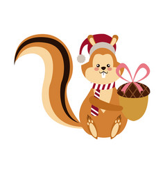 Cute squirrel with acorn christmas hat cartoon vector