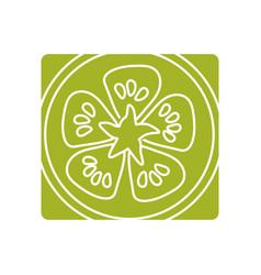 Picture fresh slice limon organ vegetable vector