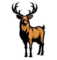 Buck mascot vector