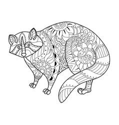 raccoon coloring book vector image vector image