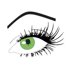 Feminine eye vector