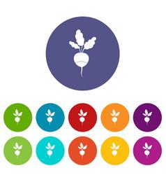 fresh radish set icons vector image