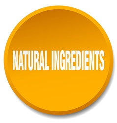 Natural ingredients orange round flat isolated vector
