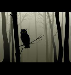 Owl in the misty woods vector