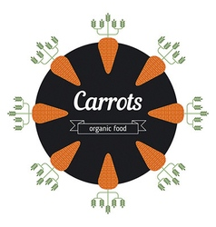 Carrot vegetables vector
