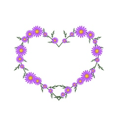 Beautiful violet daisy flowers in heart shape vector