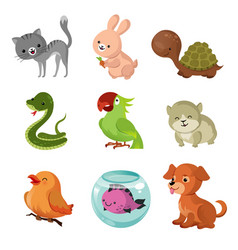 Pets domestic animals flat icons vector