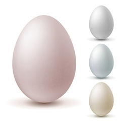Set of eggs of different colors vector