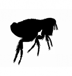 Dog flea silhouette vector
