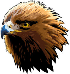 Eagle head 5 vector