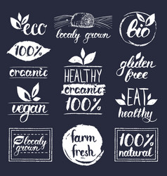 Eco organicbio logos vegan natural food vector