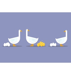 Special goose different through a group of vector