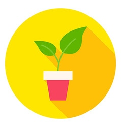 Plant in Flower Pot Circle Icon vector image