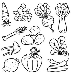 doodle vegetable various set vector image vector image