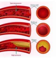 Blood image vector