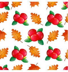 seamless pattern with cranberries vector image vector image