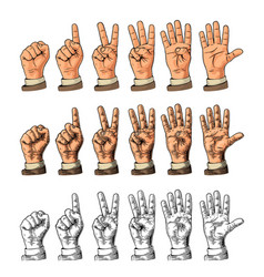 Set of gestures of hands counting from zero to vector