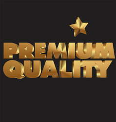 Premium quality 3d golden text vector