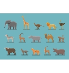 Animals set of colored icons symbols such vector