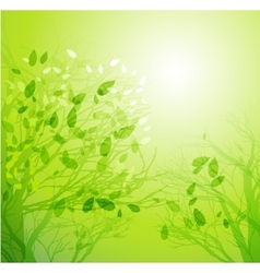 Season tree with green leaves vector image vector image