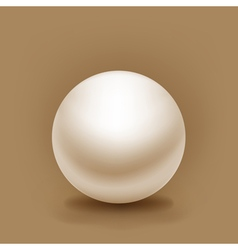 white sphere with shadow vector image