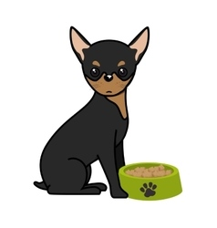 Cute dog with dish food isolated icon vector