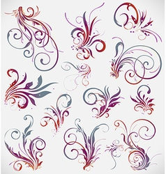 floral elements design collection vector image