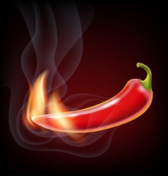 pepper smoke and fire vector image
