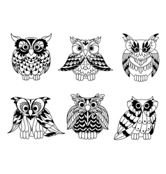 Cartoon outline owl birds set vector